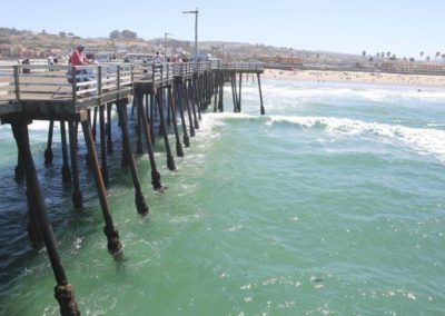 Large shark spotted swimming near pier in California